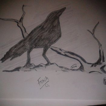 The Crow by Fiona-theartist
