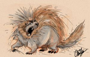 Porcupine by Clairictures