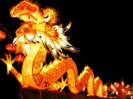 Amazing Dragons - Chinese New Year Traditions by mudassarsaleem92