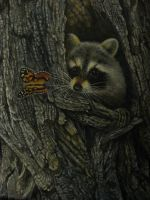 Raccoon Painting by reggy66