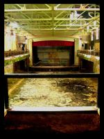 theater, flooded by thelastring