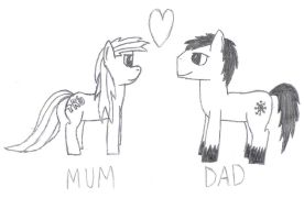 Mum and Dads anniversary prezz by Kev-Dee