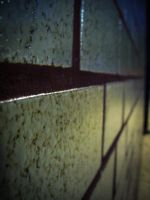 The wall by belh0r