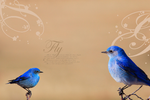 Bird Wallpaper II by Little-Tinkerbell-x