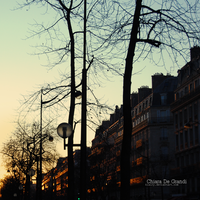 boulevard Voltaire by klairy