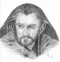 Thorin Oakenshield by LoonaLucy