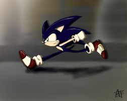 Run Hedgie RUN by SonicFF