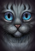 Featherpaw - Cropped Version by kuiwi
