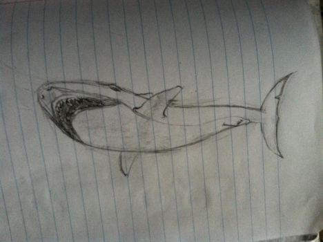 Doodle Shark by pureawesomeness1234