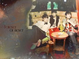 SHINee - Forever or Never by crying-ophelia