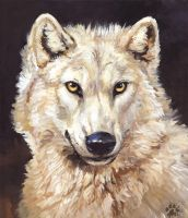 White Wolf by screwbald