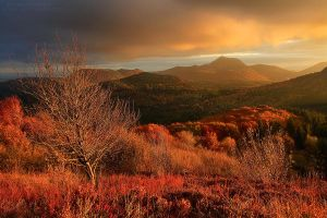 Autumnal Dreamland by FlorentCourty