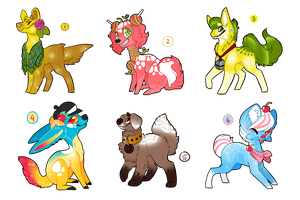 summer adopts [2 set prices open] by transparant
