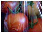 tomato trapped by the society by lenne16