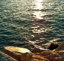 backlight on the sea by gameover2009