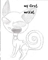 my first mr.Kat by cdyo123