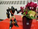 Flowers for Prowl by FunkyK38