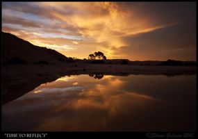 Time To Reflect by Syndyne