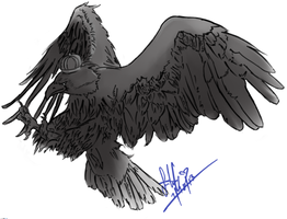 APH - Prussian Eagle by TheTwistedWonderland