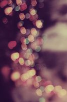 Shining brightly. by latteinpolvere