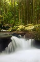 Mystical Cascades by DrewHopper
