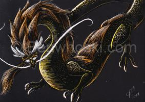 ACEO-goldendragon by benwhoski
