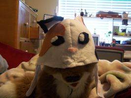Calico Kitty Hat Done by TentenIshAWolf