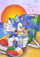sonic en la playa by rouge-bat