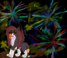 Happy 2012 by piracikowata