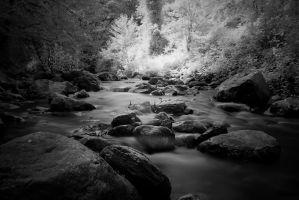 Infrared River by LucAnthonyRossiter