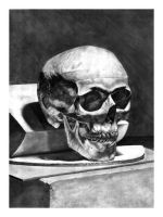 Skull Study by wags9452