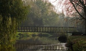 Bridge Over Untroubled Waters by quaddie
