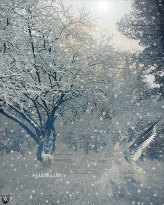 Cold Winter by Th3EmOo