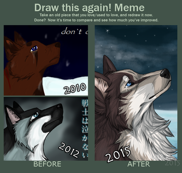 Draw this again! MEME 2010-2012-2015 by ArcticHuskie