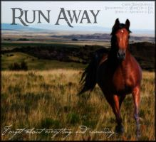 Run Away by Unknownandfrantic