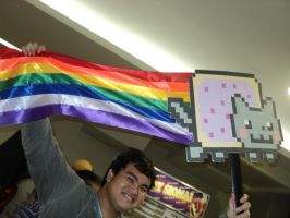 Nyan Cat by MissNellie
