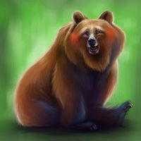 Happy bear by Huguettepizzic