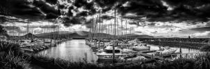Abell Point Marina Sunset BW by Questavia