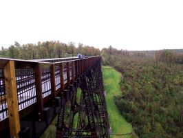 Kinzua State Bridge 10 by buffaloquinn