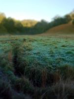 Frosty Pasture 8 by GoblinStock