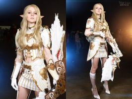 Lineage II Elf cosplay by ver1sa