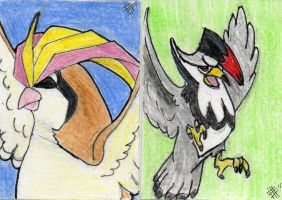 POKEMON ACEO SET 2 FOR SALE by Killslay-steelclaw