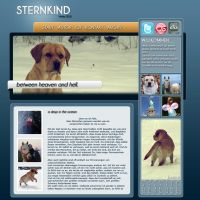 Sternkind Winter 2010 by qualify