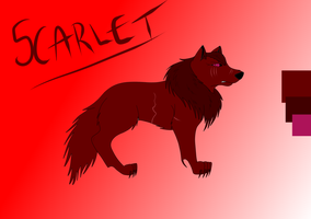 Scarlet Reference Sheet by noss5