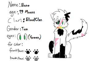 My Ref Sheet by AskBoneofBC