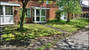 Very tidy front lawn by Rozrr