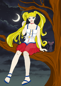 Sailormoon  in the moonlight and Luna by FieryRei