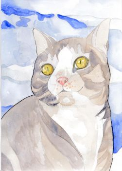 Feline Water Colour Pet Portrait by Nendakitty