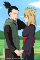 ShikaTema. gentle touch . by innera