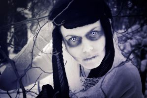 Ice eyes of Death by Equilibrium-e-Nomine